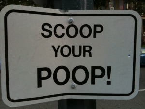 scoop your poop