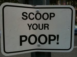 scoop your poop