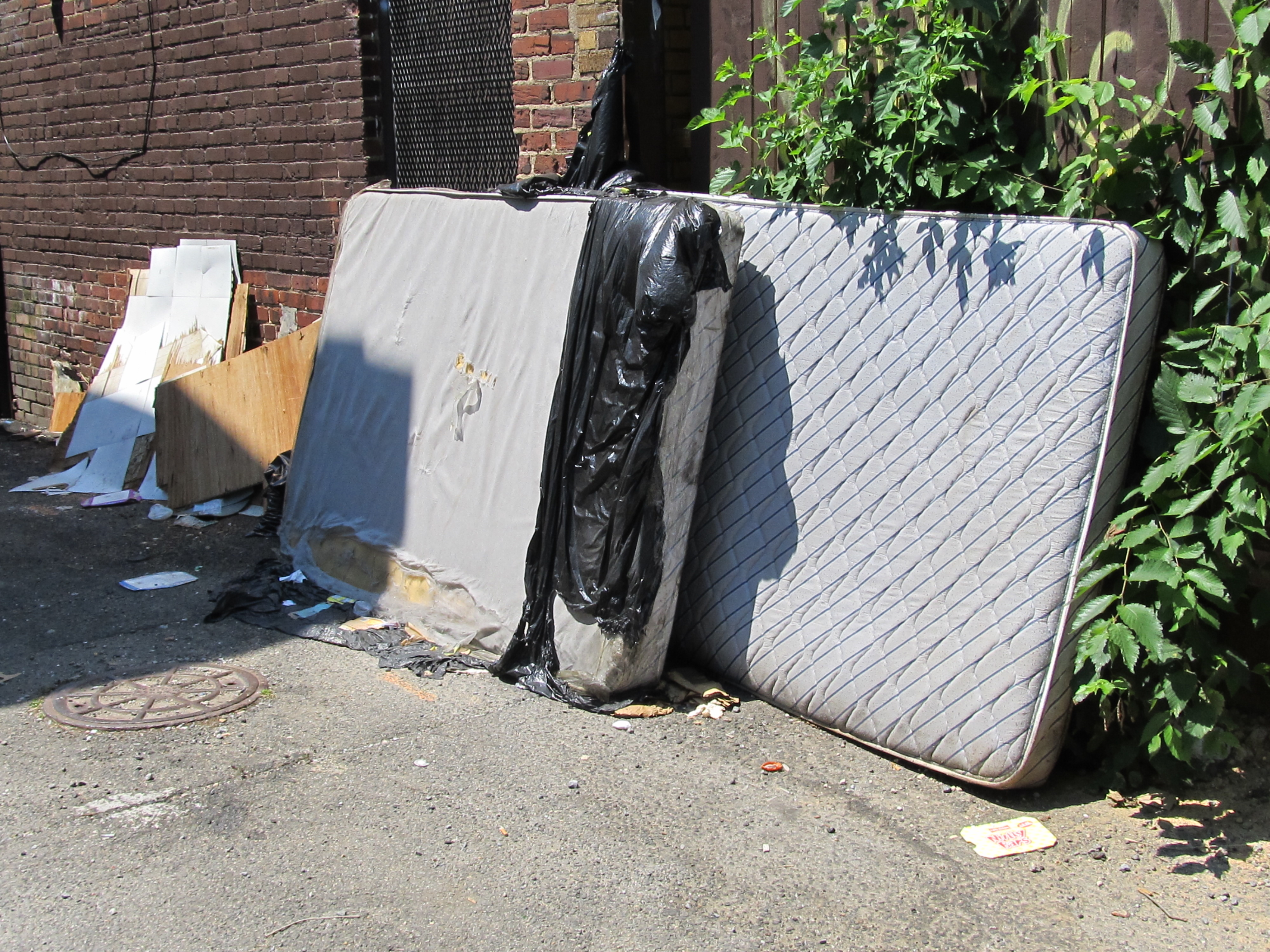 Reminder — Call 311 for Bulk Trash Collection