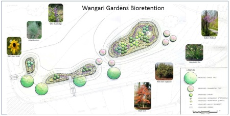 Wangari bioretention plan