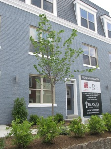 The landscaping at 610 Newton Place includes a tree -- much needed on that block.