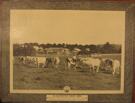 Soldiers Home dairy