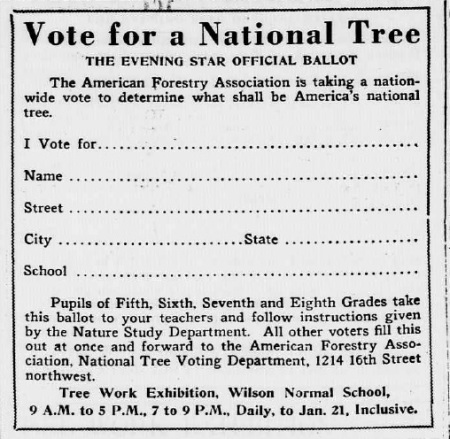 National Tree ballot
