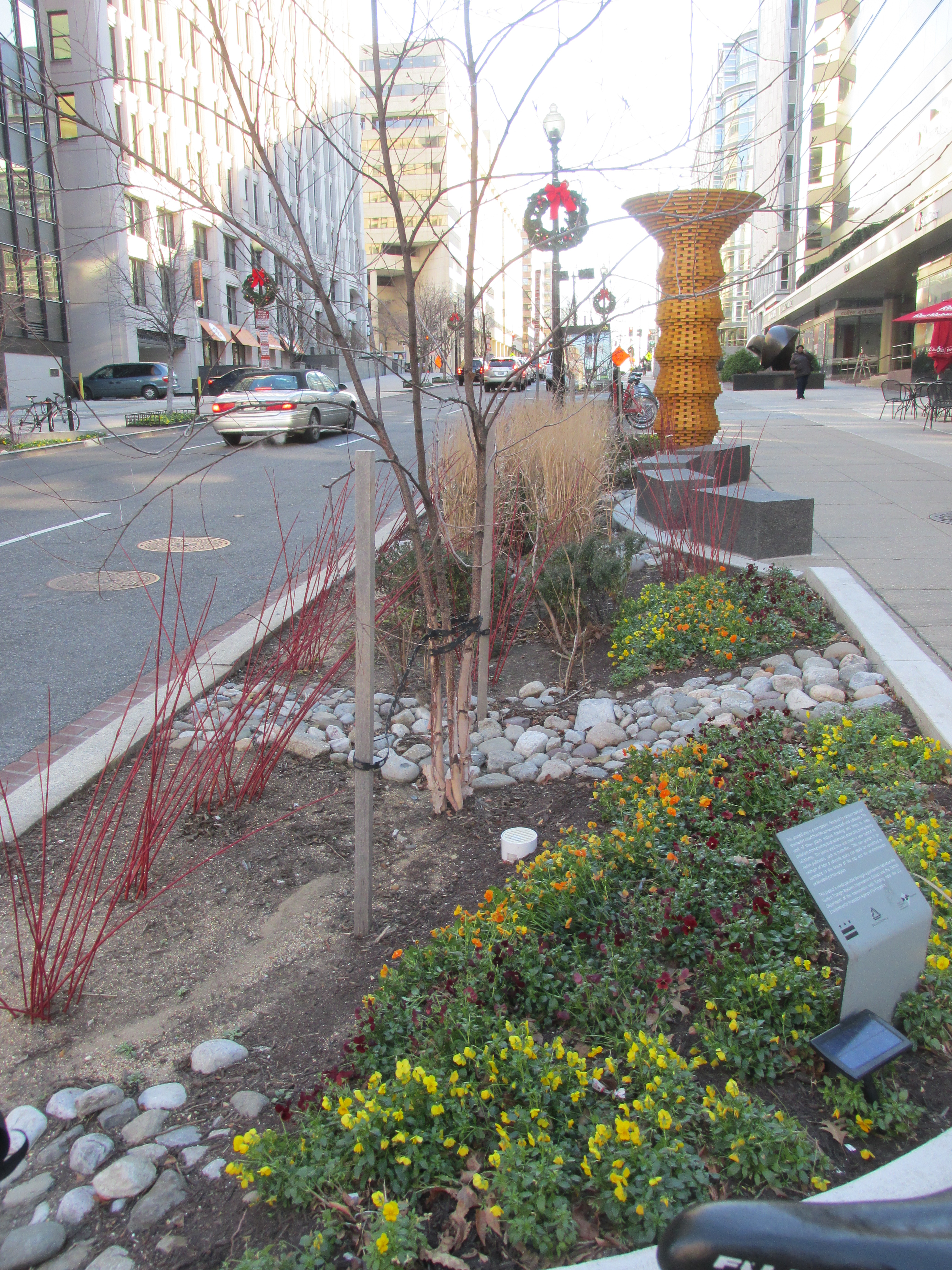 Checking Out Bioretention Planter Areas With Art Park