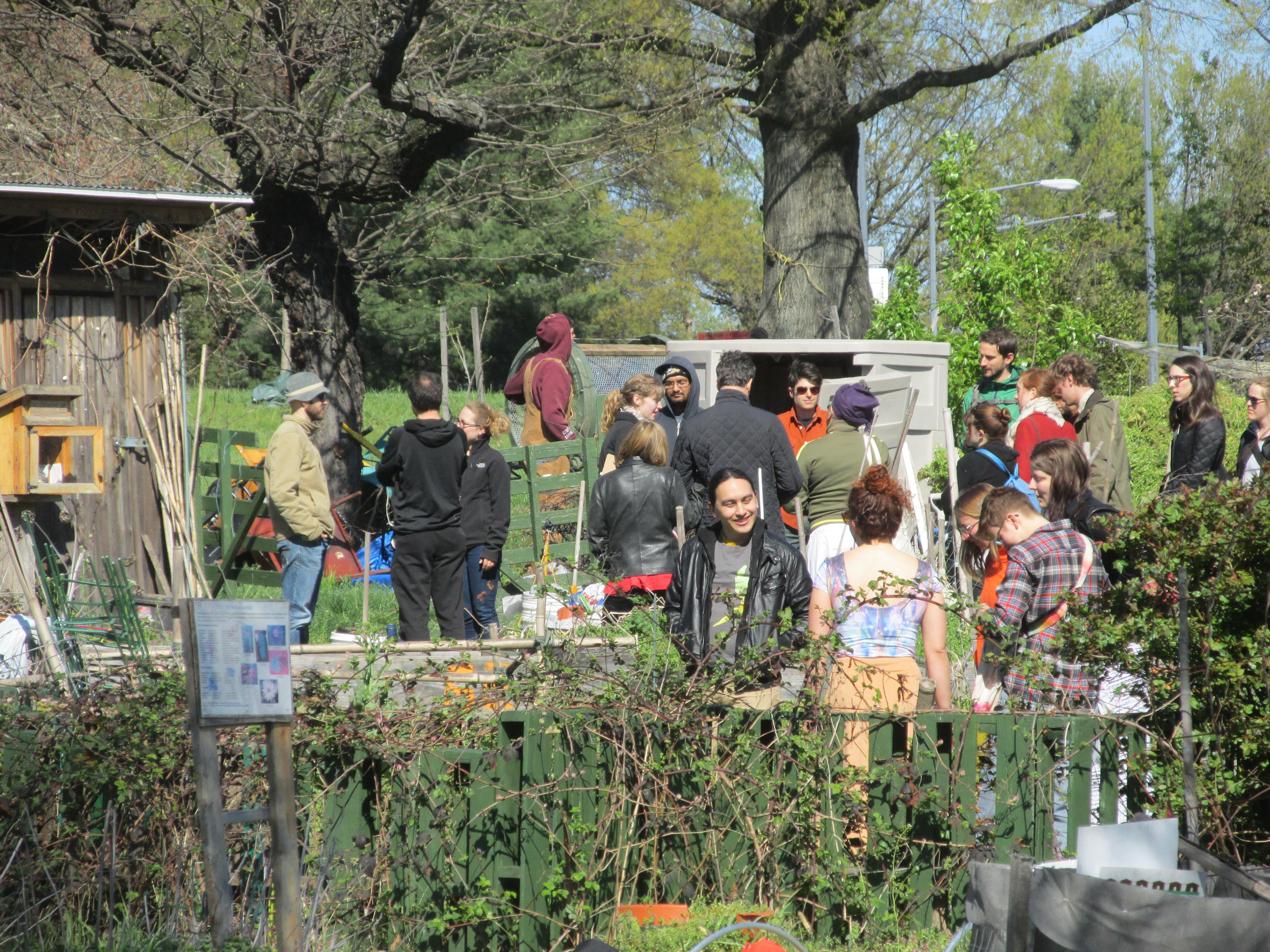 community gardens park view d c