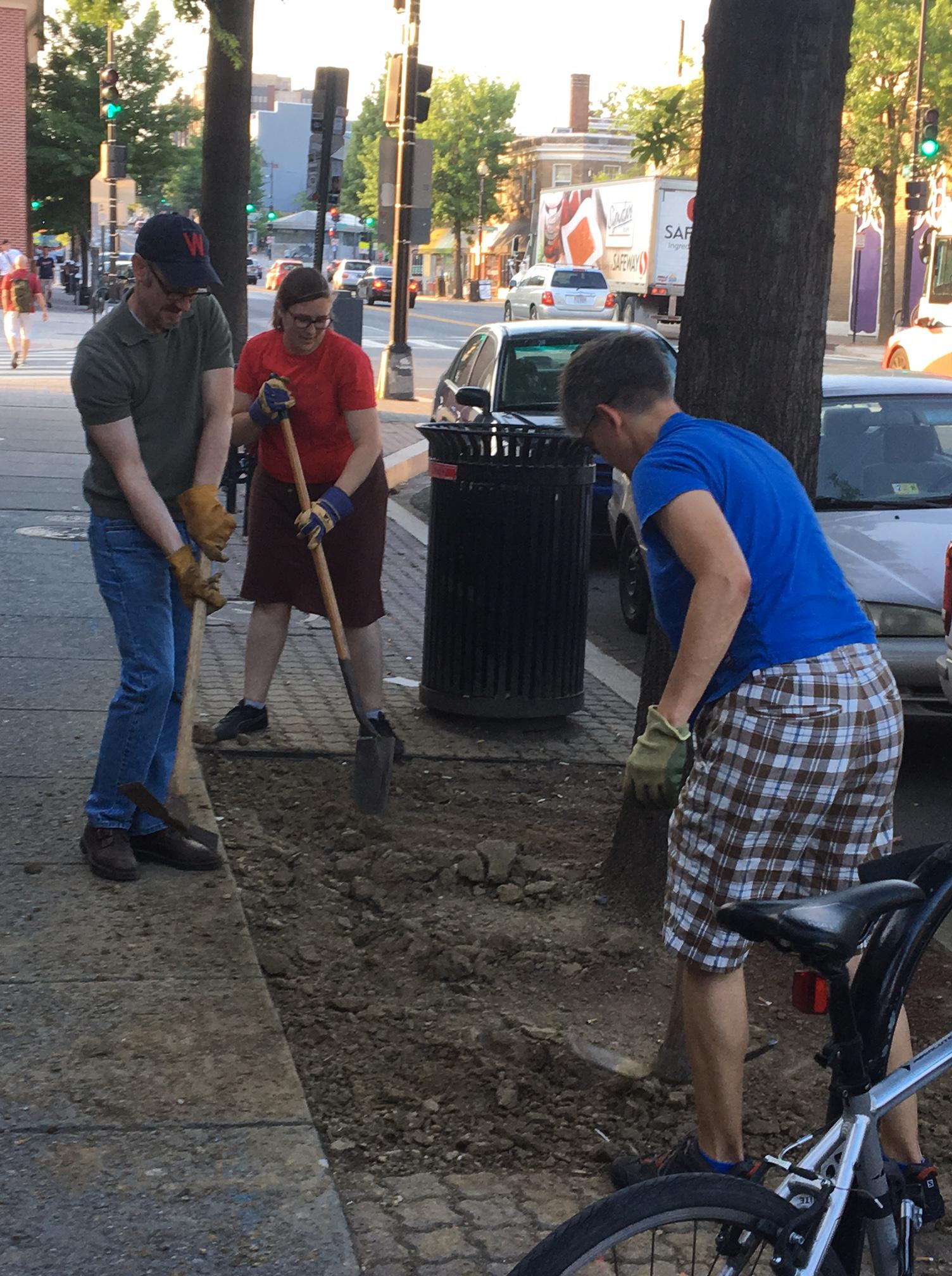 neighborhood beautification | Park View, D.C.